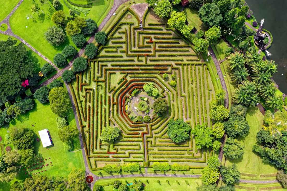 aerial shot of maze